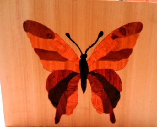 wood_butterfly
